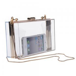 Transparent Acrylic Evening Bag